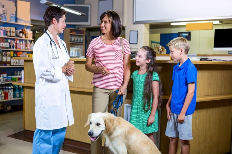 ask vet about heartworm