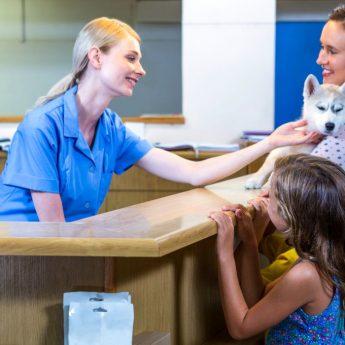 PetSmart Health Insurance