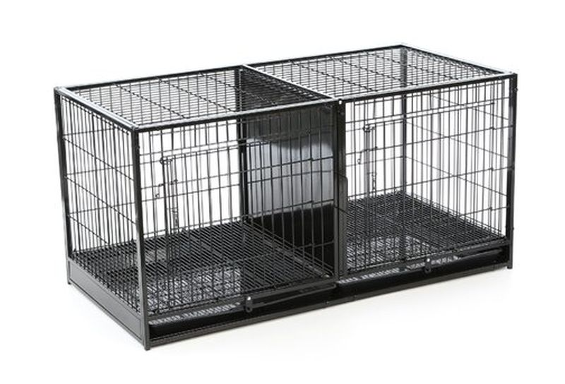 stackable dog crates and kennels