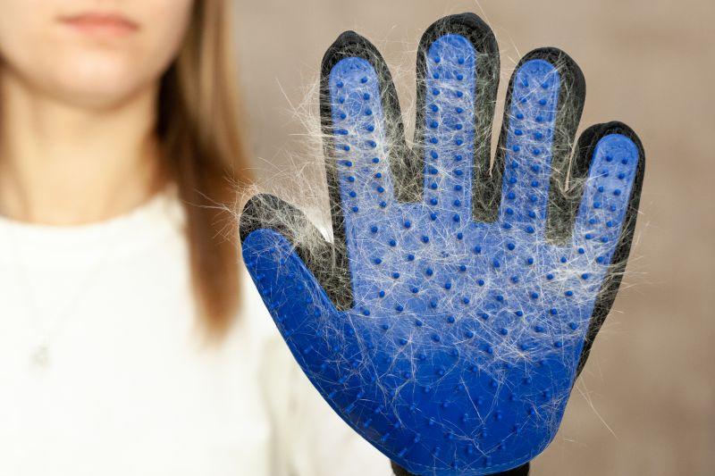husky grooming glove