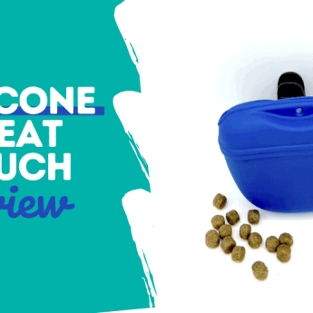 Silicone-Dog-Treat-Pouch-Review