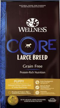 Wellness CORE Large Puppy Food
