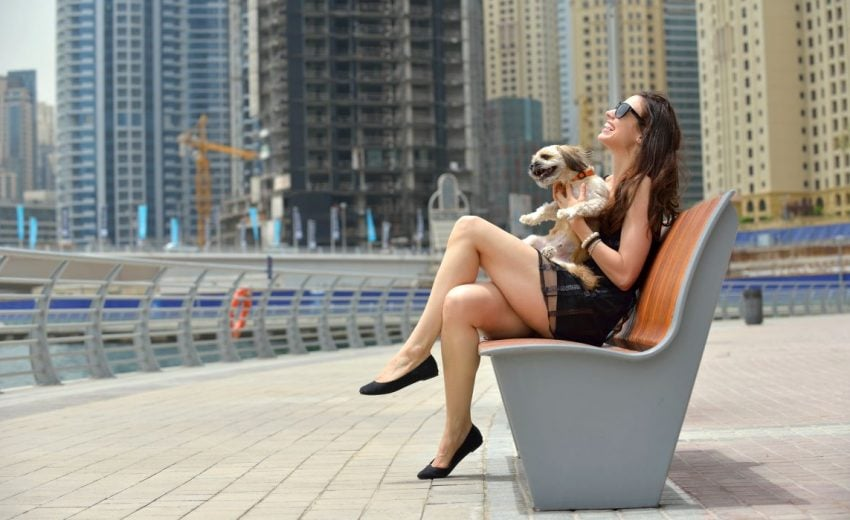 dogs for city living