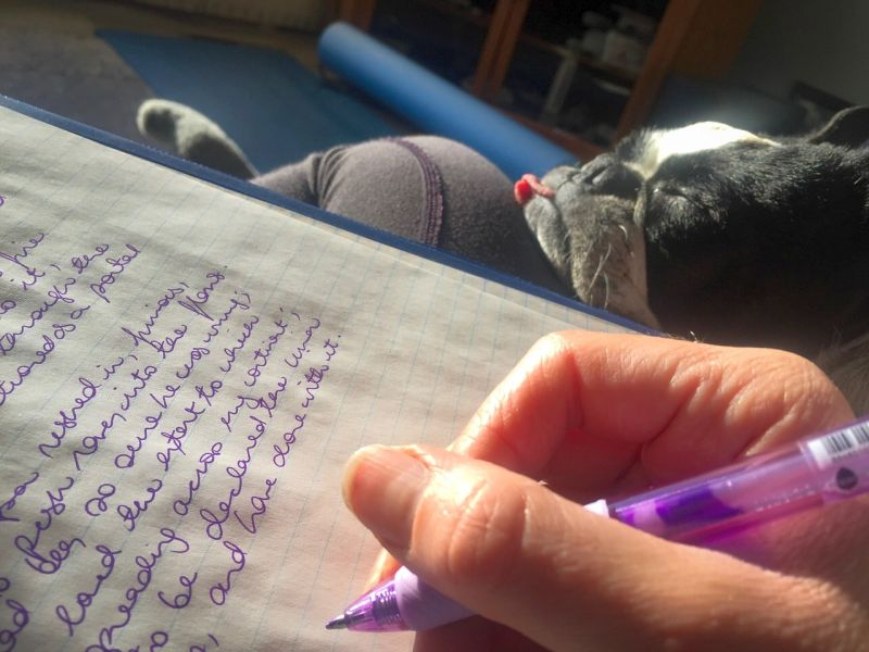 Journal to Figure Out Dog's Stressor