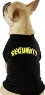 Costume T-shirt for dogs