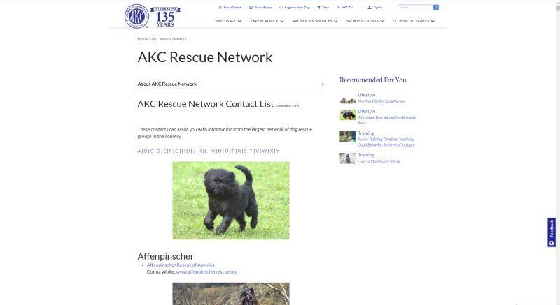AKC adoption website