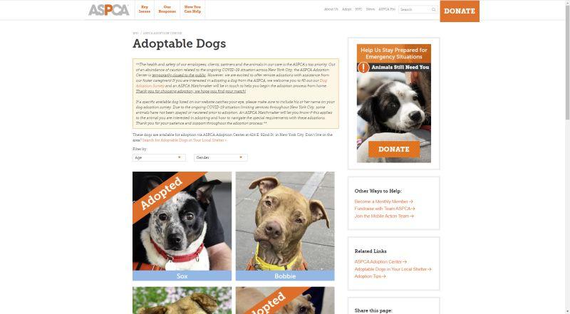ASPCA adoption website