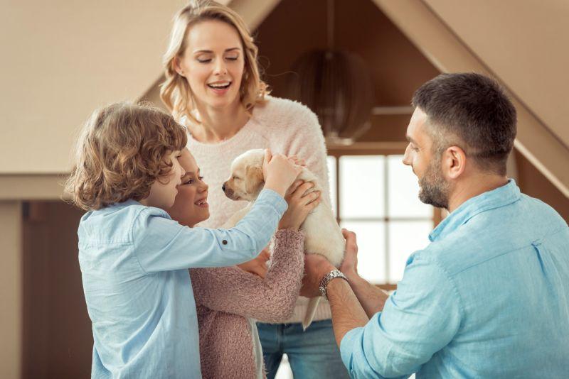 adopting a new dog