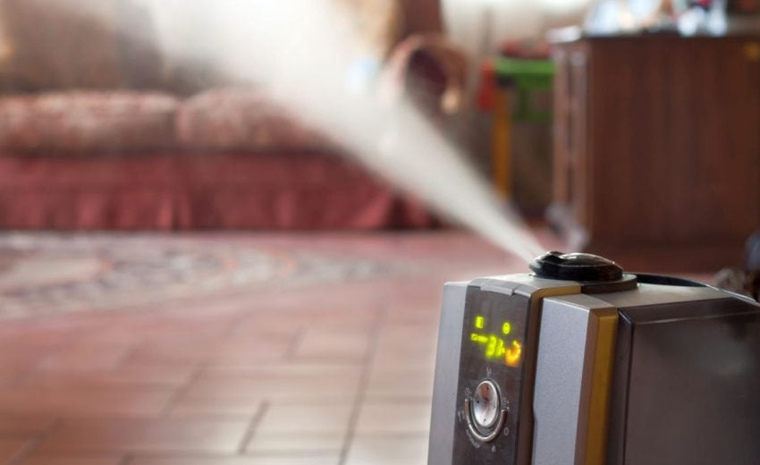 humidifier for dogs