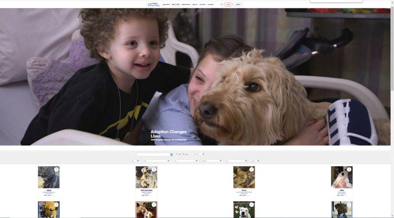 Petsmart adoption site