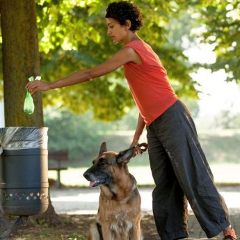 what should you do with dog poop