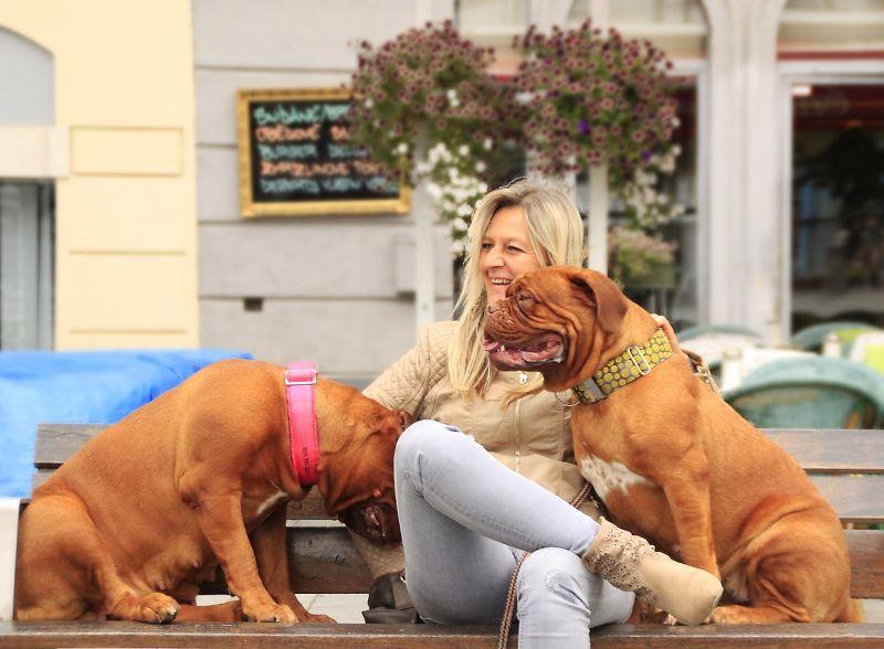 people-centered dog breeds