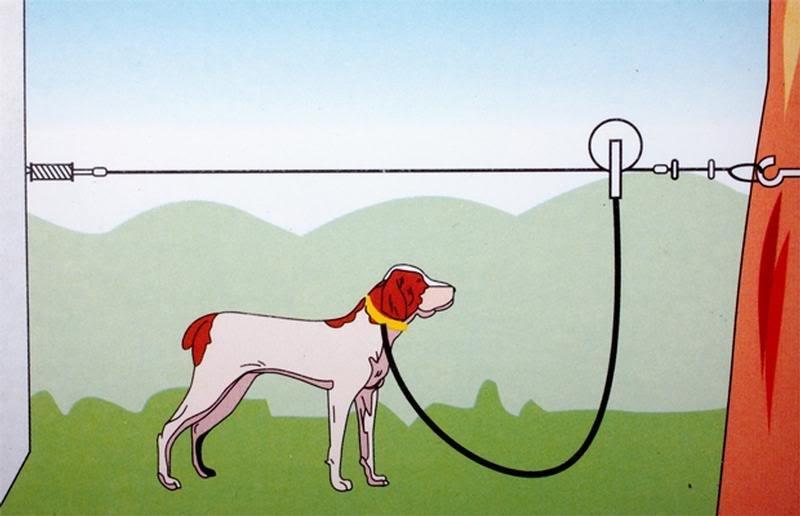attache-chien ou chariot