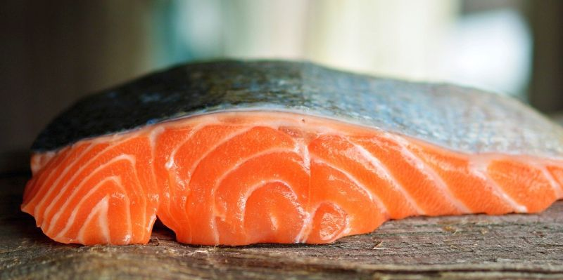 dogs can eat cooked salmon