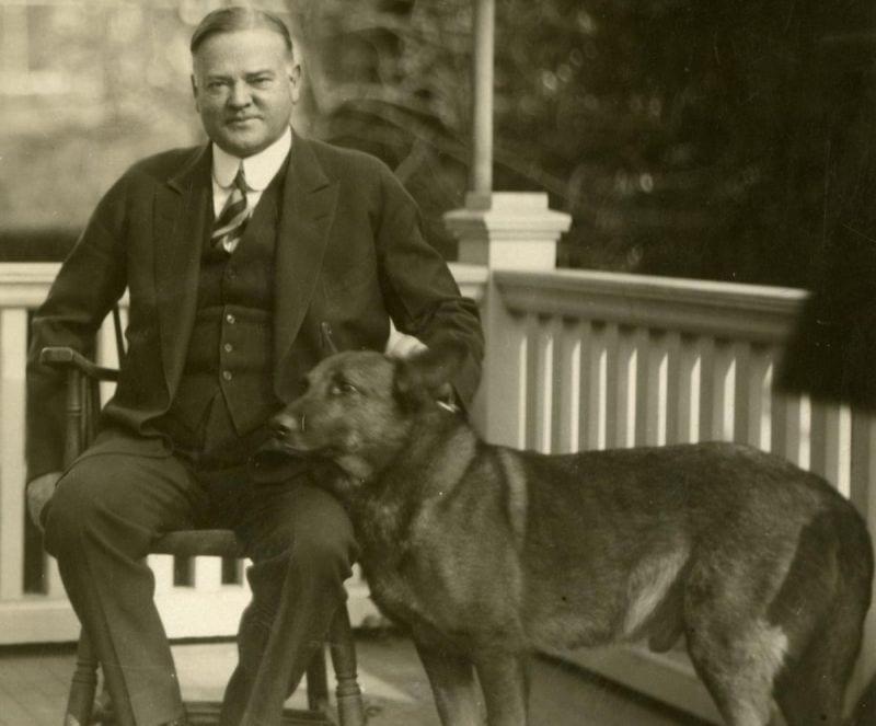 President Hoover's dog