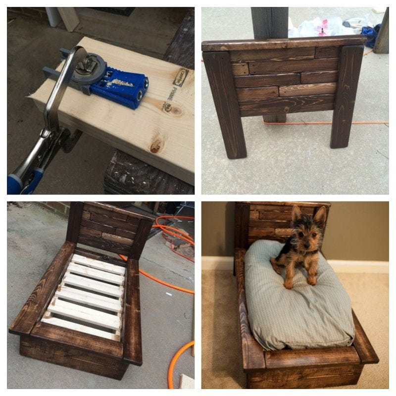 Make a dog bed from a pallet