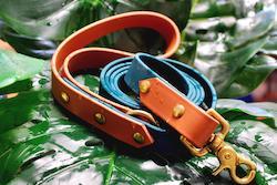 Waterproof Two Tone Dog Leash
