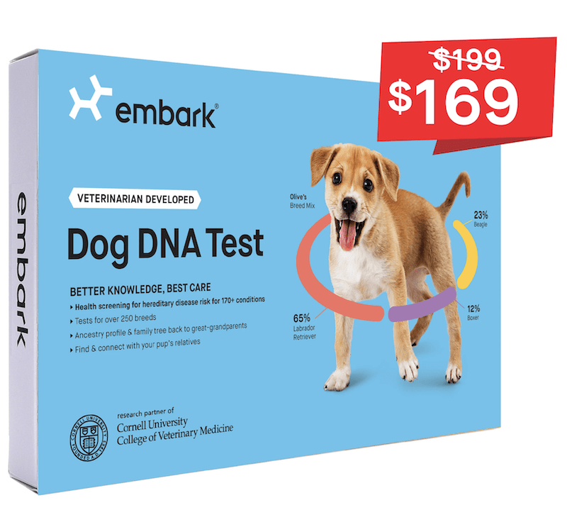 embark breed and health