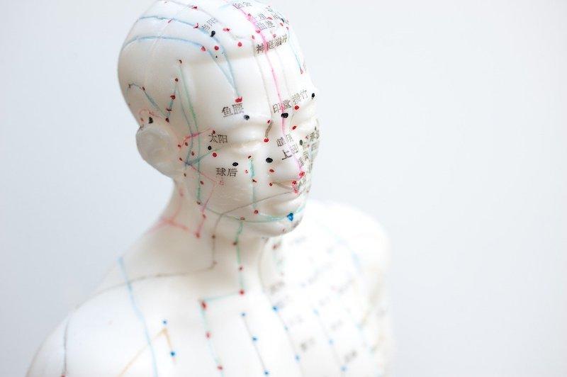 how dog acupunture works