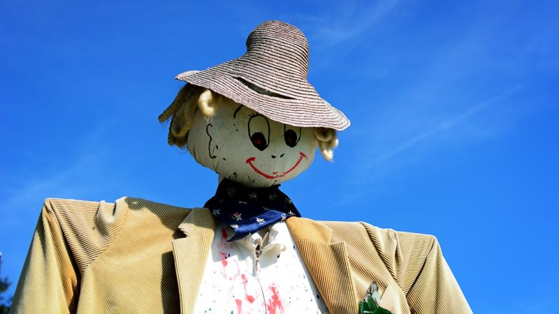 scarecrows may repel dogs