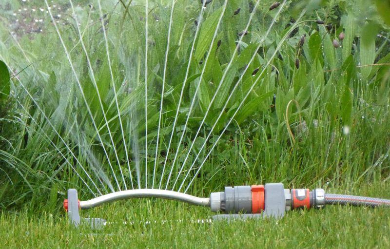 use sprinklers to keep dogs away