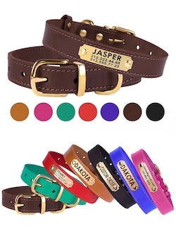 Customized Leather Dog Collar