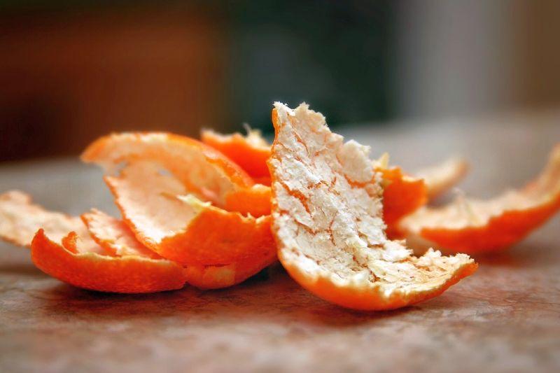 citrus peels deter dog digging