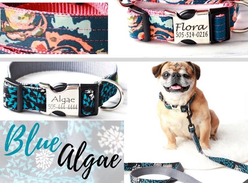 Personalized Boho Style Dog Collar