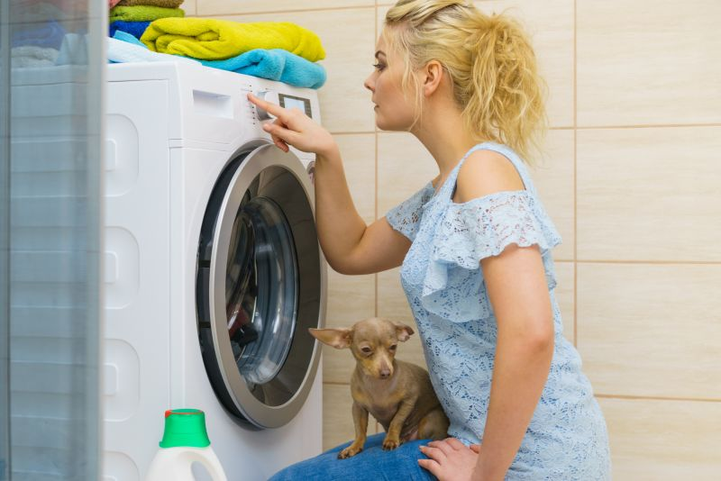 Laundry tips to fix dog hair