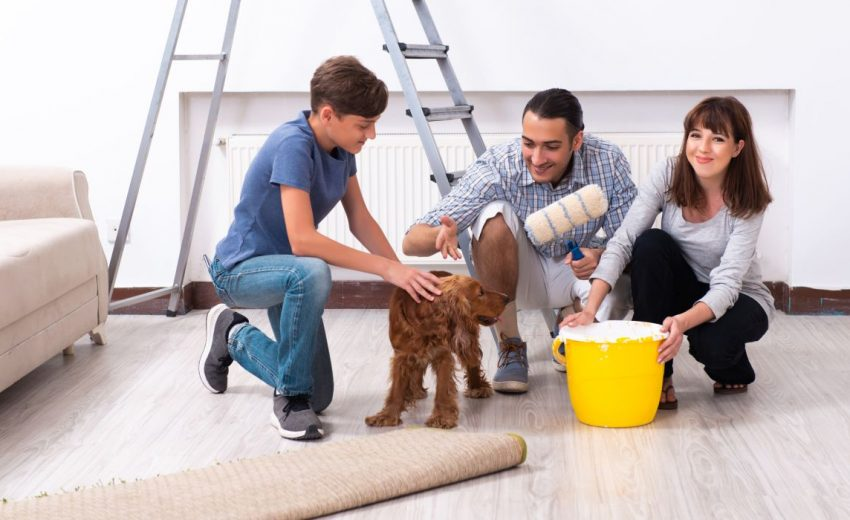 Pet-safe paints for dog owners