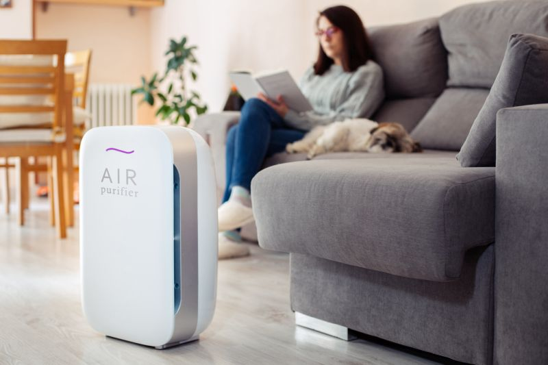 How to pick air purifier for pets