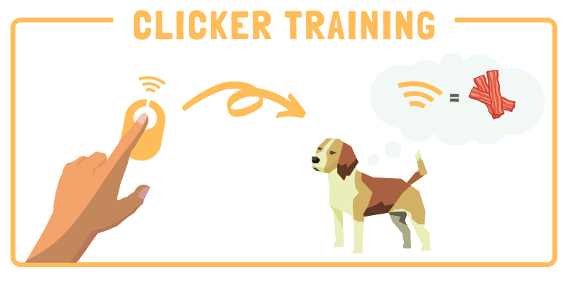 charging a clicker