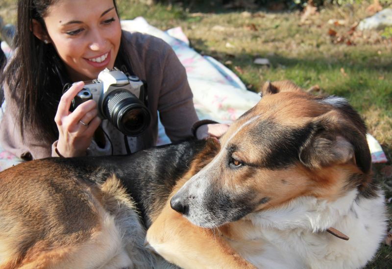 get your pet used to the camera