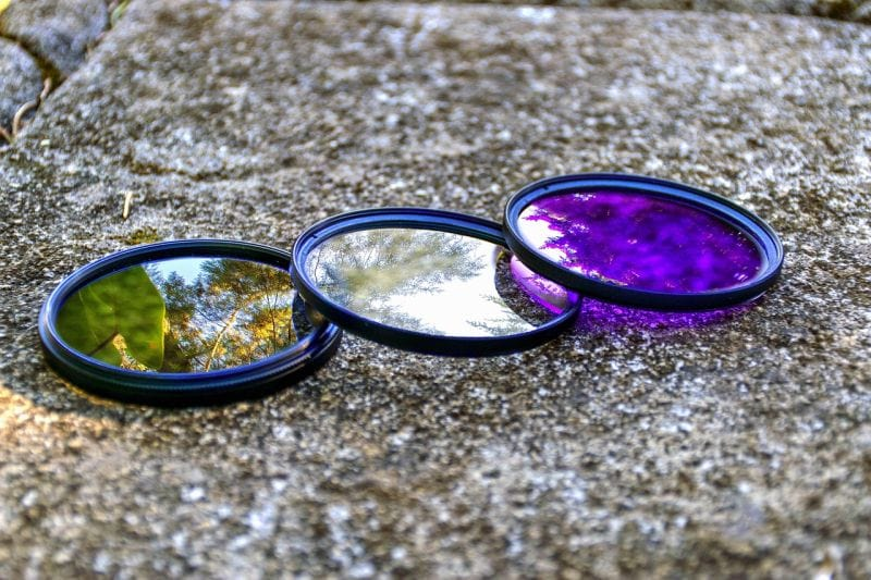 Use lens filters for dog photos