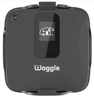 waggle-rv-device