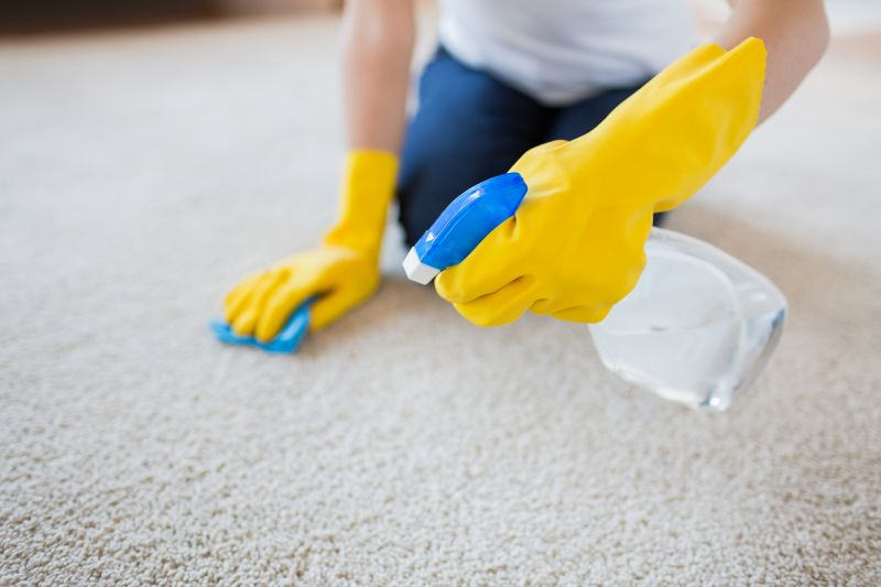 carpet deodorizer for homes with pets