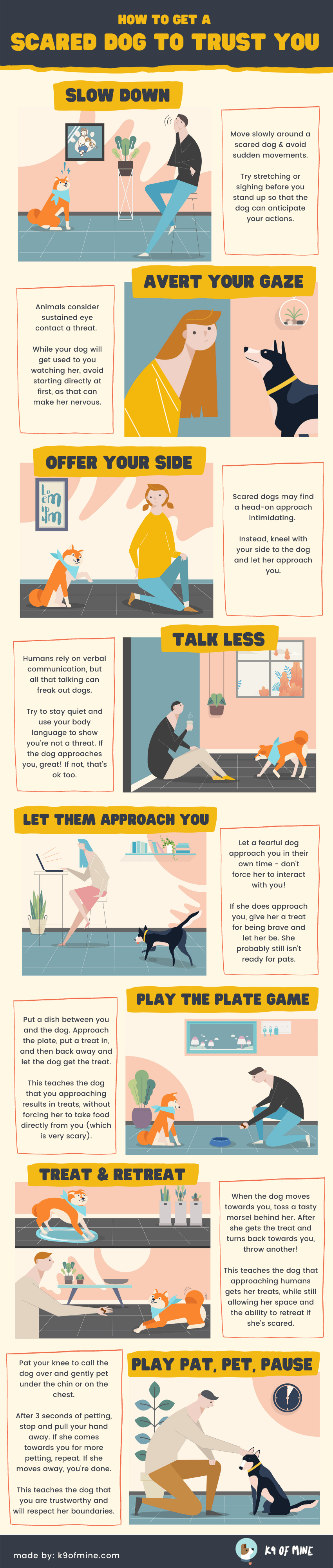 scared dog to trust infographic