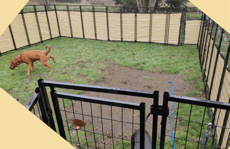 fence with privacy panels