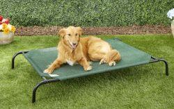 Coolaroo elevated dog bed