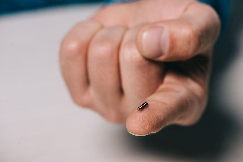 photo of microchip implant