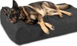 The Big Barker Premium Dog Bed