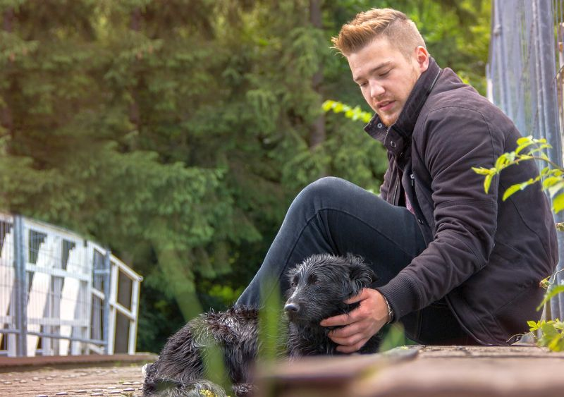 finding solutions to dog's outdoor fear
