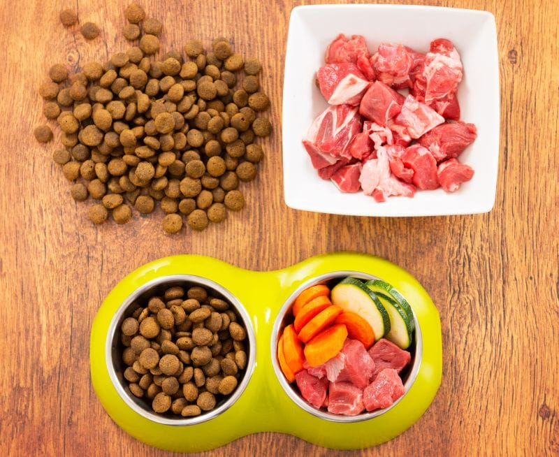 what is an organic dog food