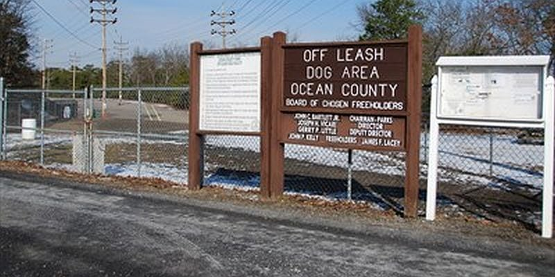 Ocean County Dog Area