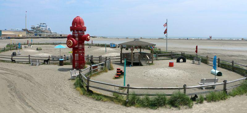 Wildwood Dog Park & Beach NJ