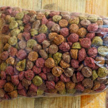 Free dog food samples