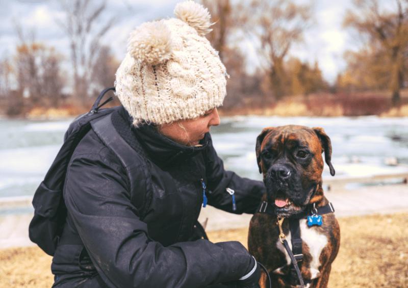 certified dog behaviorist