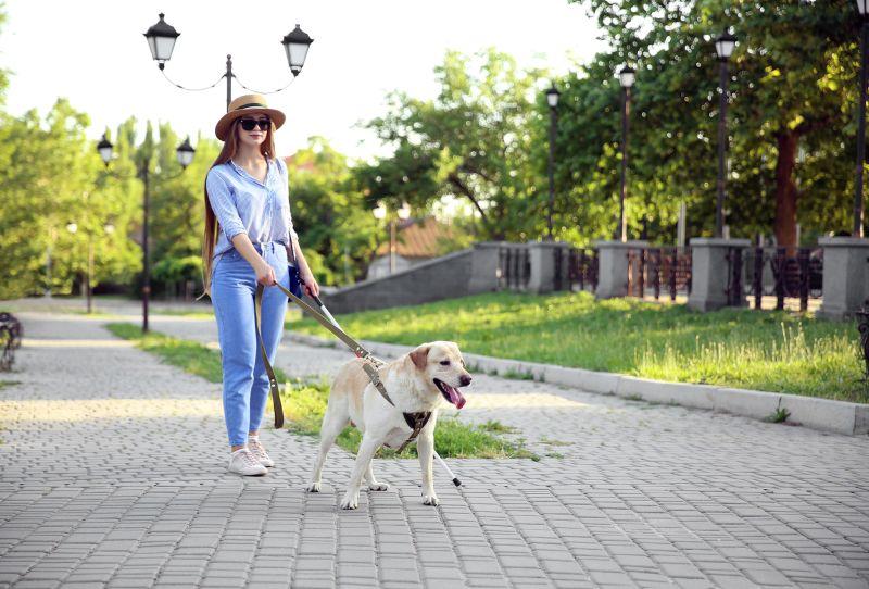 best dog parks in Austin