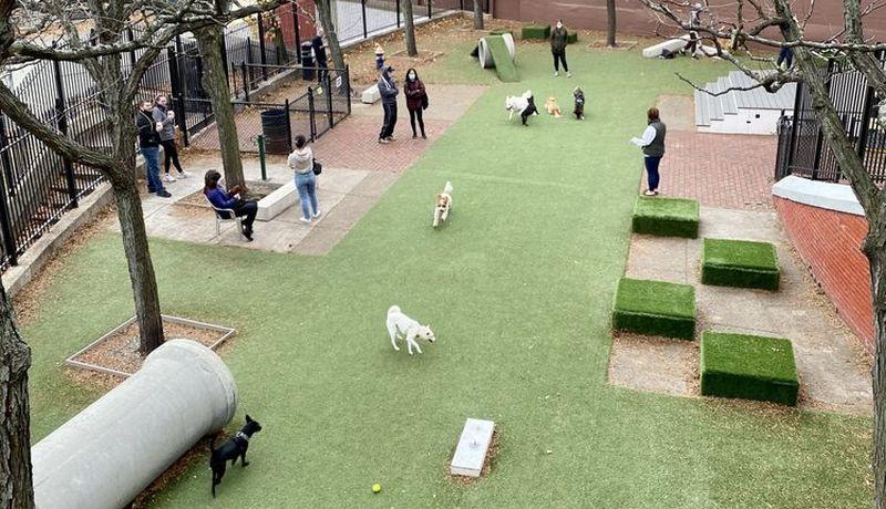RUFF North End Dog Park