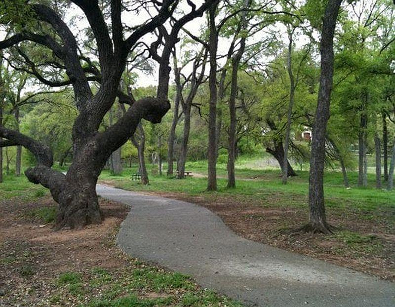Shoal Creek Greenbelt Dog Park